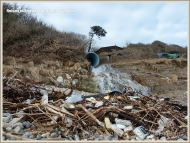 Flotsam packets of cigarettes and tubs of cheese washed ashore at Ringstead Bay