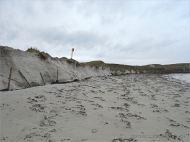 Storm-damaged tombola sand dunes at Dogs Bay