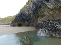 Rhossili Cliff Walk 34
