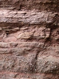 Detail of the composition of Lower Carboniferous Hopewell Cape Formation conglomerate, sandstone and mudstone layers at Hopewell Rocks in New Brunswick