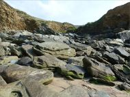 Beach boulders with Chondrites trace fossils at Clogher Bay