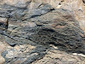 Close-up of a band of black vesicular rock in an outcrop near Four Mile Beach in Port Douglas