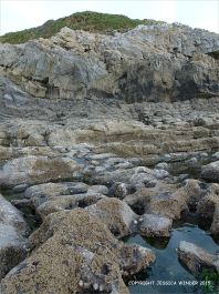 Carboniferous limestone palaeo-karst surface on which Caswell Bay Mudstones lie unconformably