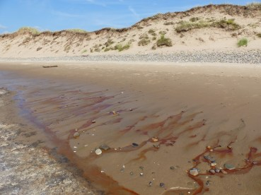 Red liquid draining from the beach at Whiteford Sands