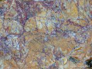 Vein quartz with coloured biofilms