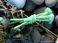 Piece of green and yellow knotted rope flotsam
