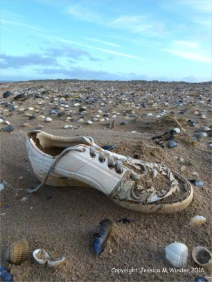 Flotsam white trainer shoe washed ashore