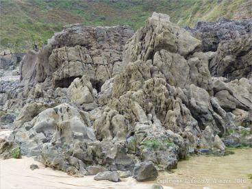 Carboniferous limestone rock formation at Langland Bay
