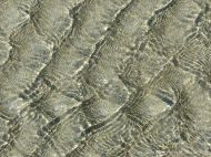 Ripple patterns in clear flowing water at Rocquaine Bay
