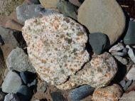 Gypsum crystals in beach stones
