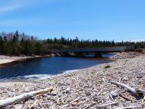 Looking upstream at the dark water flowing in Black Brook