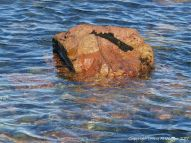 Orange boulder in the blue sea at Rousse Point