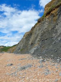 Cliff of Eype Clay with minor land slip