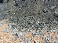 Pile of Eype Clay Member debris from a minor land clip on cliffs at Seatown