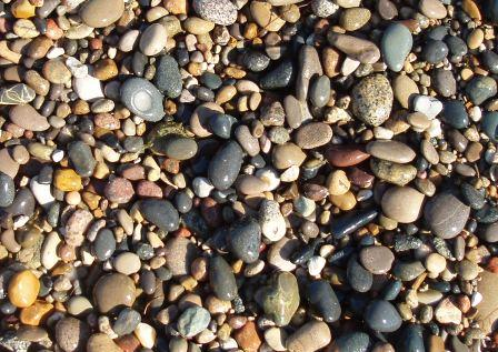Illinois Beach 2b cropped