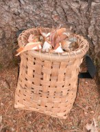 split rattan basket filled with birch bark