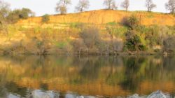 Fair Oaks Bluff, reflection, mirror, mornings, Fair Oaks Bridge, nature, outdoors, writing, jounal