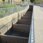 fish ladder, Chinook salmon, American River, Nimbus Fish Hatchery