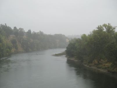 American River, Fair Oaks, Fair Oaks Bridge, rain, water, ducks, mist