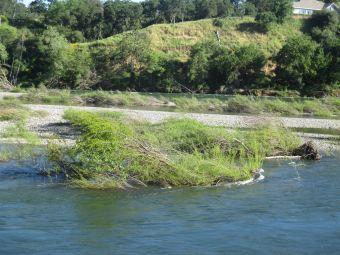 American River, flood
