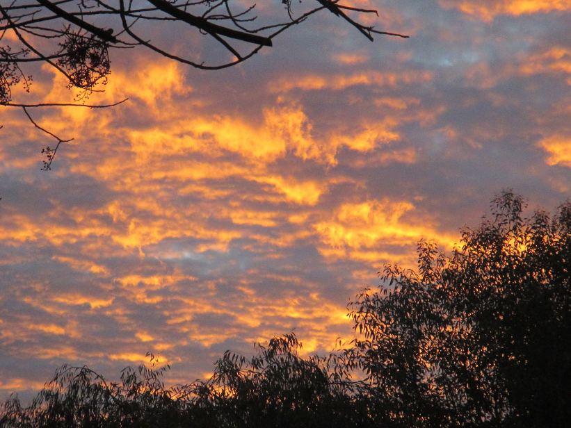sunrise, morning, dawn, Fair Oaks Bridge, American River, mornings