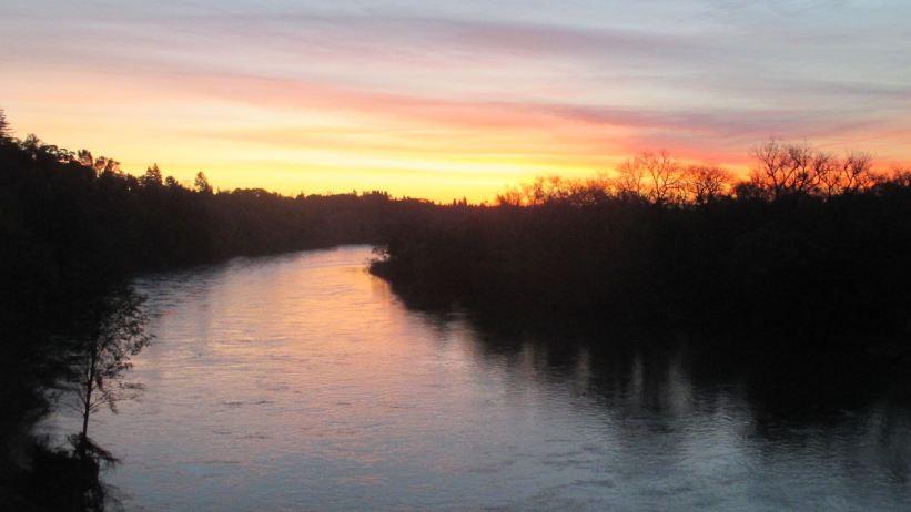 sunrise, Fair Oaks Bridge, morning, American River, shadows. frogs, Canada Geese, chickens, ducks, swim, splash