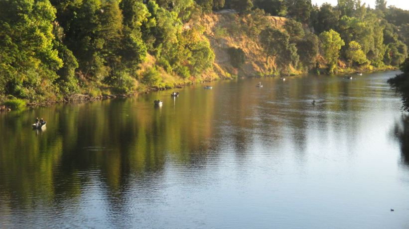 Fair Oaks Bridge, American River, fishermen, fishing, salmon, mornings, fall,