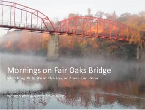 Mornings on Fair Oaks Bridge, Fair Oaks, American River, mornings, nature, blogs, photography, writing