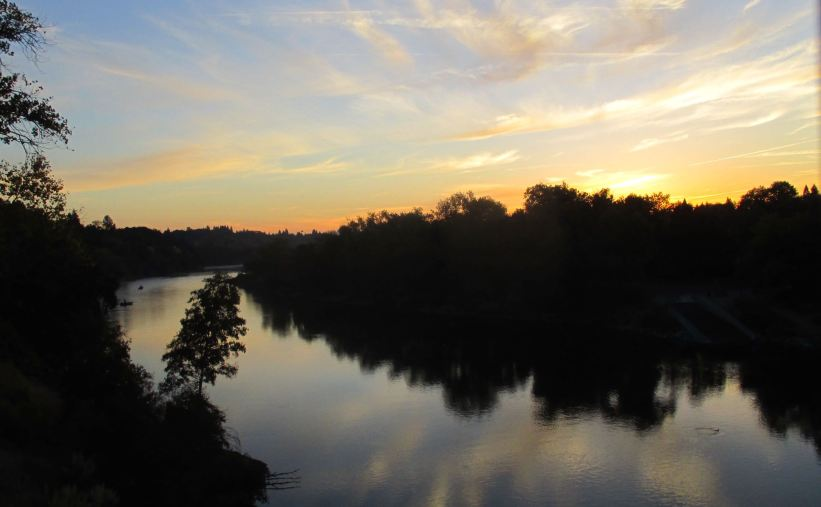 mornings, Fair Oaks Bridge, American River, American River Parkway, mornings, water, wildlife, nature, writing,