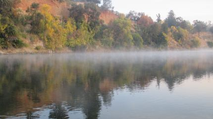 morning mist, American River, Fair Oaks Bridge, nature, outdoors, beauty, peace, outdoor,