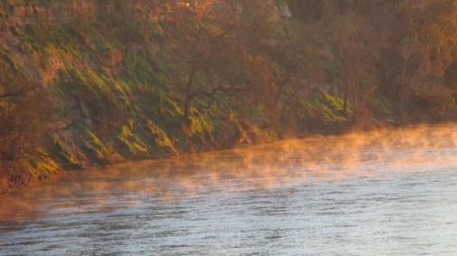 mist, sunrise, mornings, Fair Oaks Bridge, American River, write, nature, observe, outdoors
