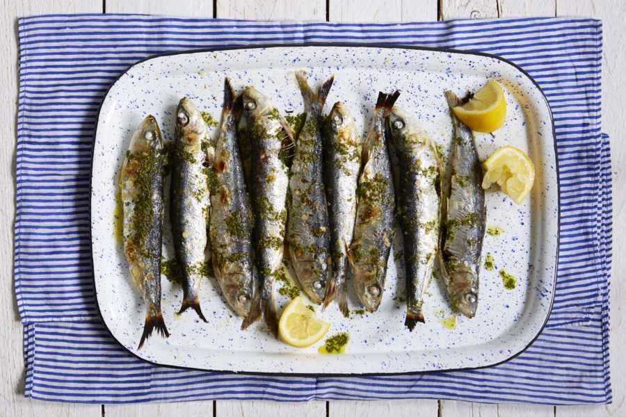 petits poissons gras oméga 3 grossesse