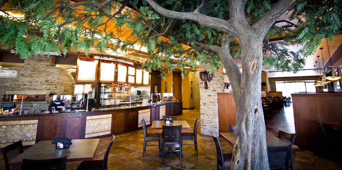 Acacia Tree Malawis Pizza NatureMaker Steel Art Trees