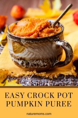 Easy Crock Pot Pumpkin Puree