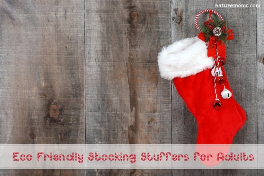 looking for some unique stocking stuffer ideas for the adults