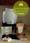 Did You Win the Kombucha Kit Giveaway??