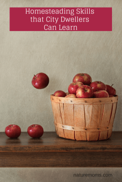Homesteading Skills that City Dwellers Can Learn - naturemoms.com