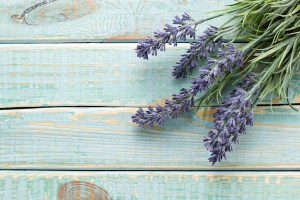 Green Cleaning With Lavender Oil