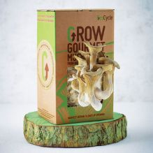 normal_grow-your-own-mushroom-kit