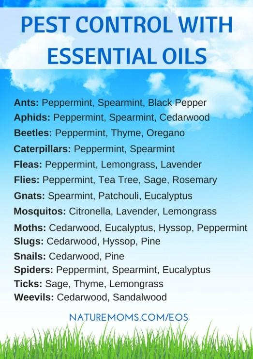 Essential Oil Pest Control