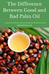 The Difference Between Good and Bad Palm Oil