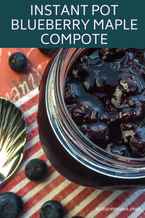 Instant Pot Blueberry Compote