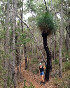 bushwalks perth