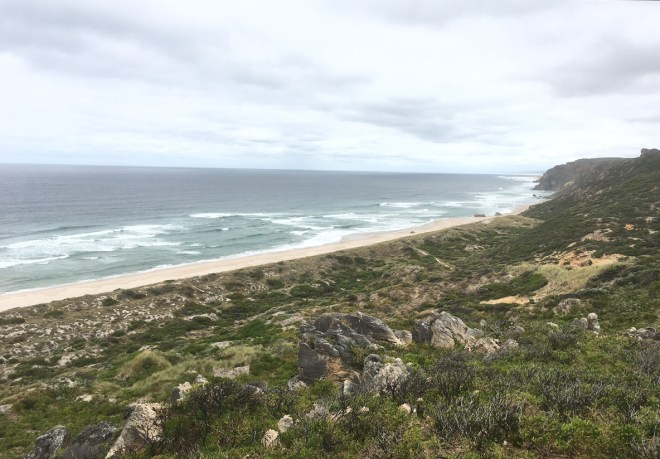 The view of Salmon Beach in D'Entrecasteaux National Park