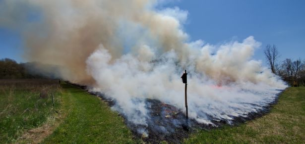 The prescribed burn at Saul Lake Bog Nature Preserve.
