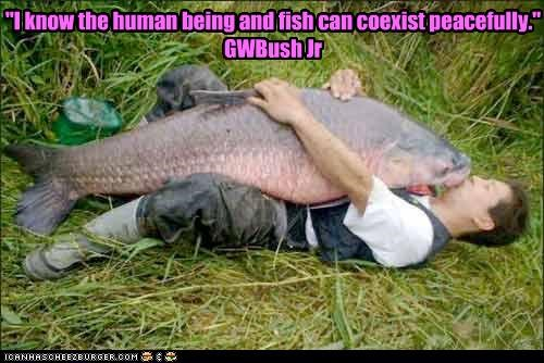 The human being and the fish: can they coexist? | The ...