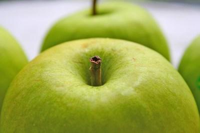 Apple © monkeyc.net