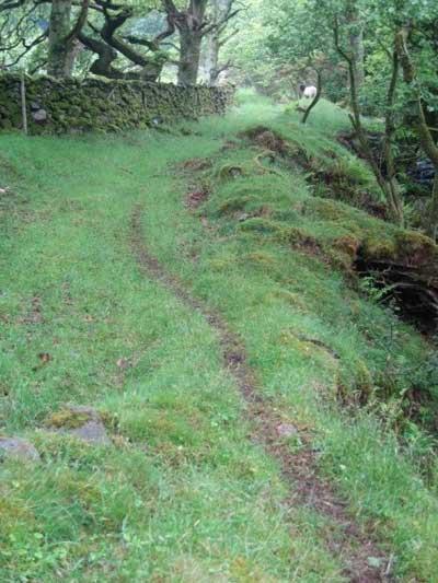 Bagot goat path