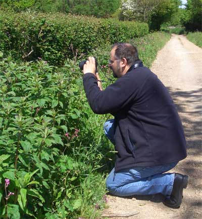 Surveying a hedgerow