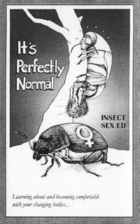Insect Sex Ed
